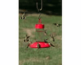 Dr JB Switchable Hummingbird Feeders