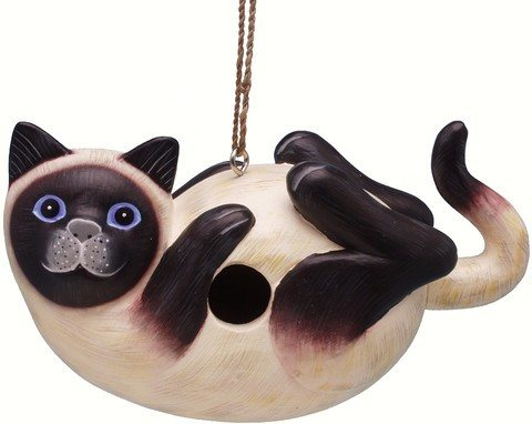 Siamese Cat on Back Bird House