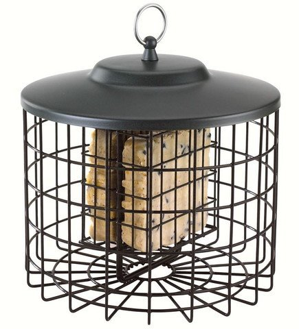 Squirrel Proof Double Suet Feeder
