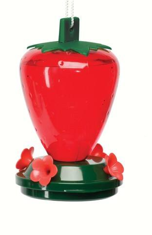 Strawberry Hummingbird Feeder 24 oz