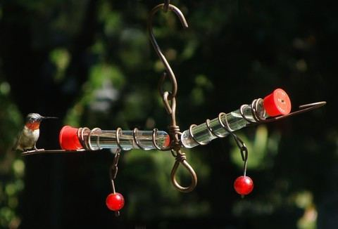 Whimsey Tweeter Totter Hummingbird Feeder