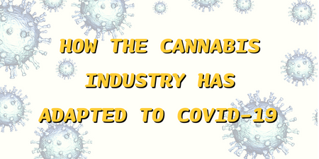 How Has COVID-19 Affected The Cannabis Industry?