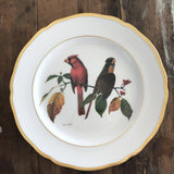 Vintage Decorative Plate - Spode - The Cardinal