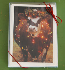 Boxed Christmas Cow Card