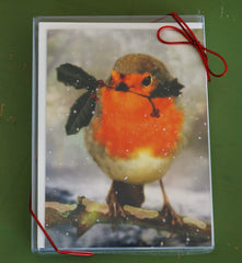 Robin in the Snow Boxed Holiday