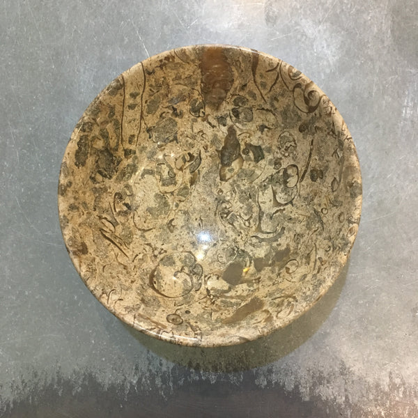 Little Fossil Bowl