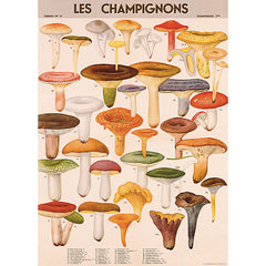 Wrapping Paper Sheet -Mushrooms - Back in Stock