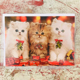 three cats christmas cards