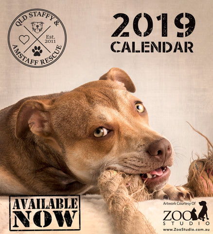 2019 QSAR Staffy Calendar