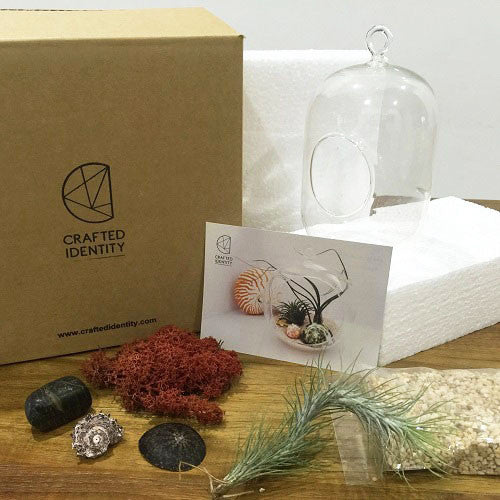 Urban Jungle S-l Terrarium Kit