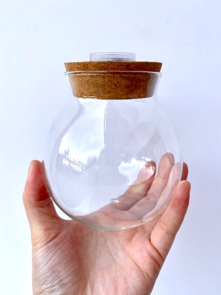 Glass Jar with Light