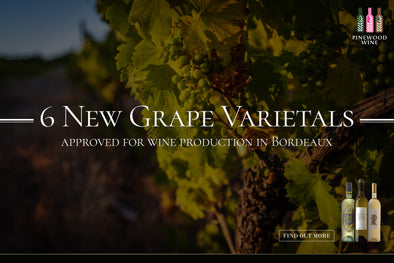 【Wine Knowledge】6 New Grape Varietals