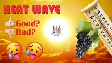 Pinewood Wine : Heat wave weather and wine 天氣與葡萄