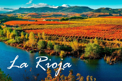 Pinewood Wine : Travel La Rioja