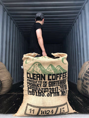 New Coffees