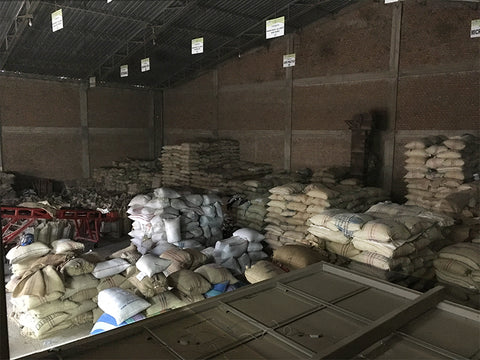 Common Man Coffee Roasters Colombia Warehouse Coffee Bags Ready for export