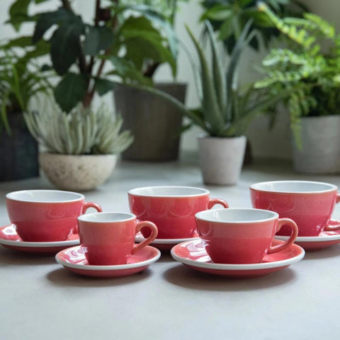 250ml Cappuccino Cup & Saucer Set (Potters Colours)