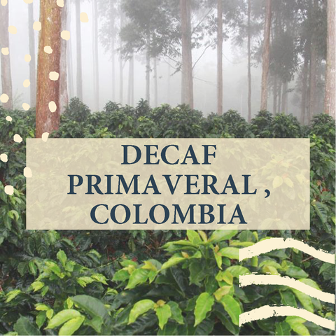 Decaf Primaveral, Colombia