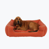 Apricot Bolster Dog Bed