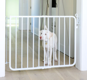 auto locking pet gate