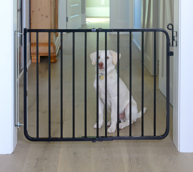 black autolocking dog gate