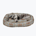 chew-proof dog beds