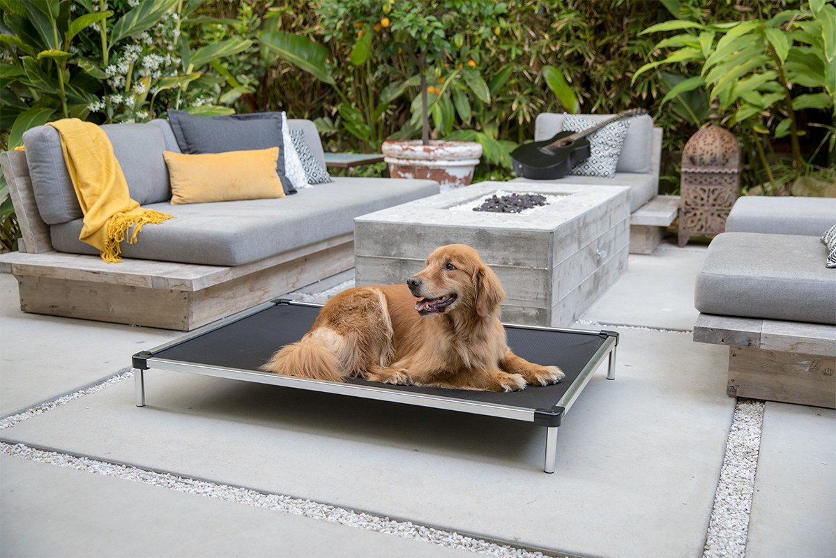 Chew proof elevated dog bed