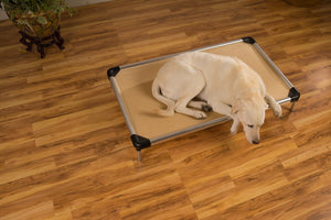 chew proof dog bed elevated