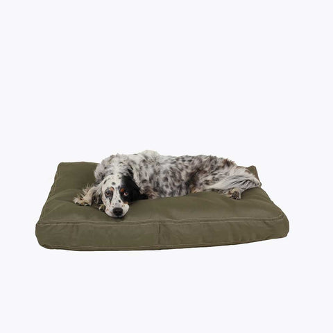 chew-proof pillow dog bed