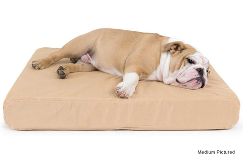 chewproof memory foam dog bed