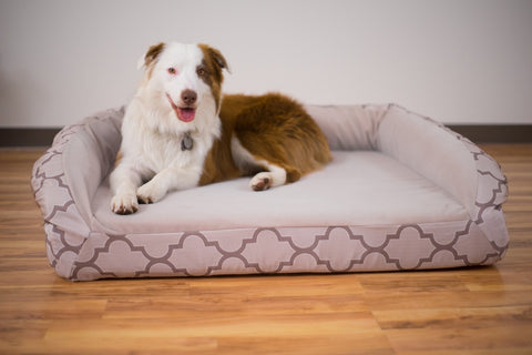 velvet chewproof dog bed
