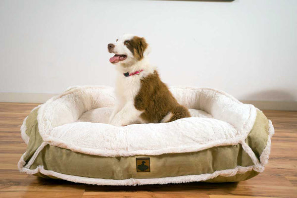 Faux Fur Bumper Dog Bed