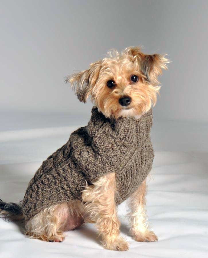 gray cable knit dog sweater