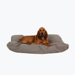 chew-resistant rectangle dog bed
