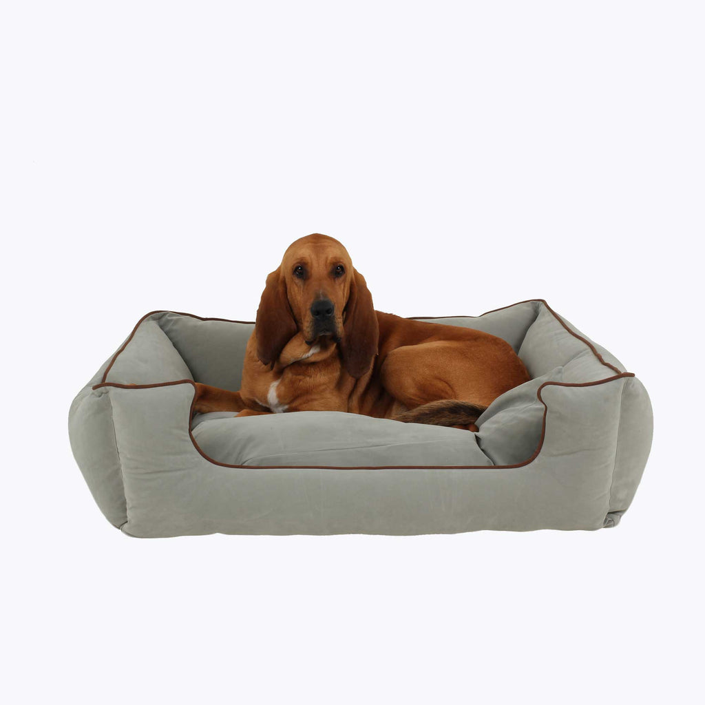 Spa Blue Bolster Dog Bed