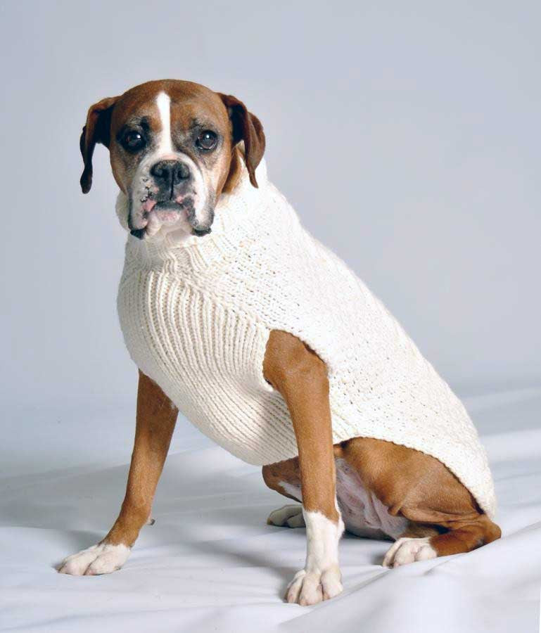 natural cable knit dog sweater
