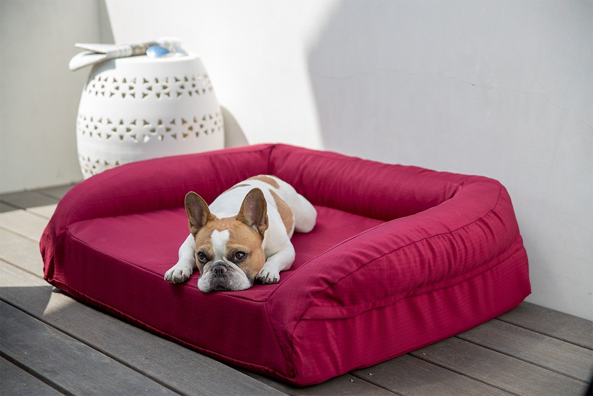 Chew resistant bolstered tough dog bed