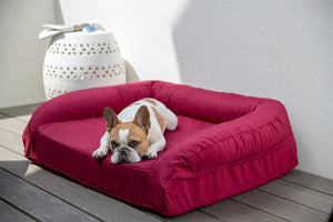 Chew-proof bolster dog bed orthopedic memory foam