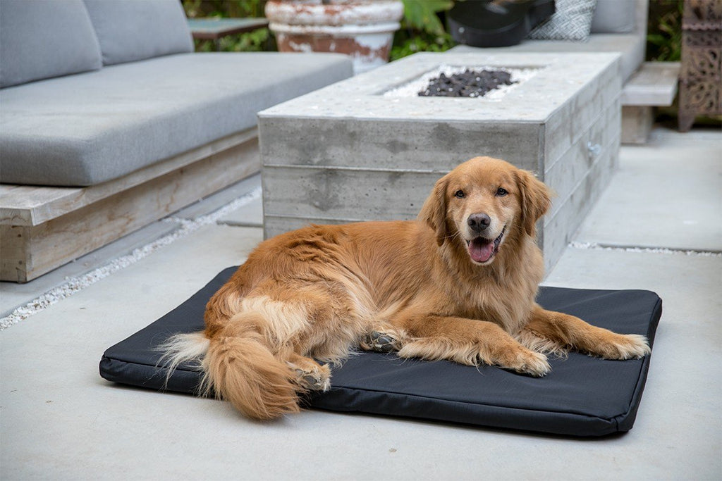 chew-resistant orthopedic dog crate pad bed