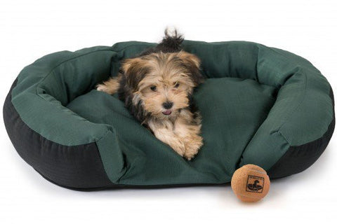 small chew-proof dog bed