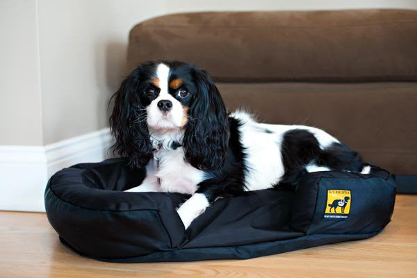 Mini TUFF Dog Bed