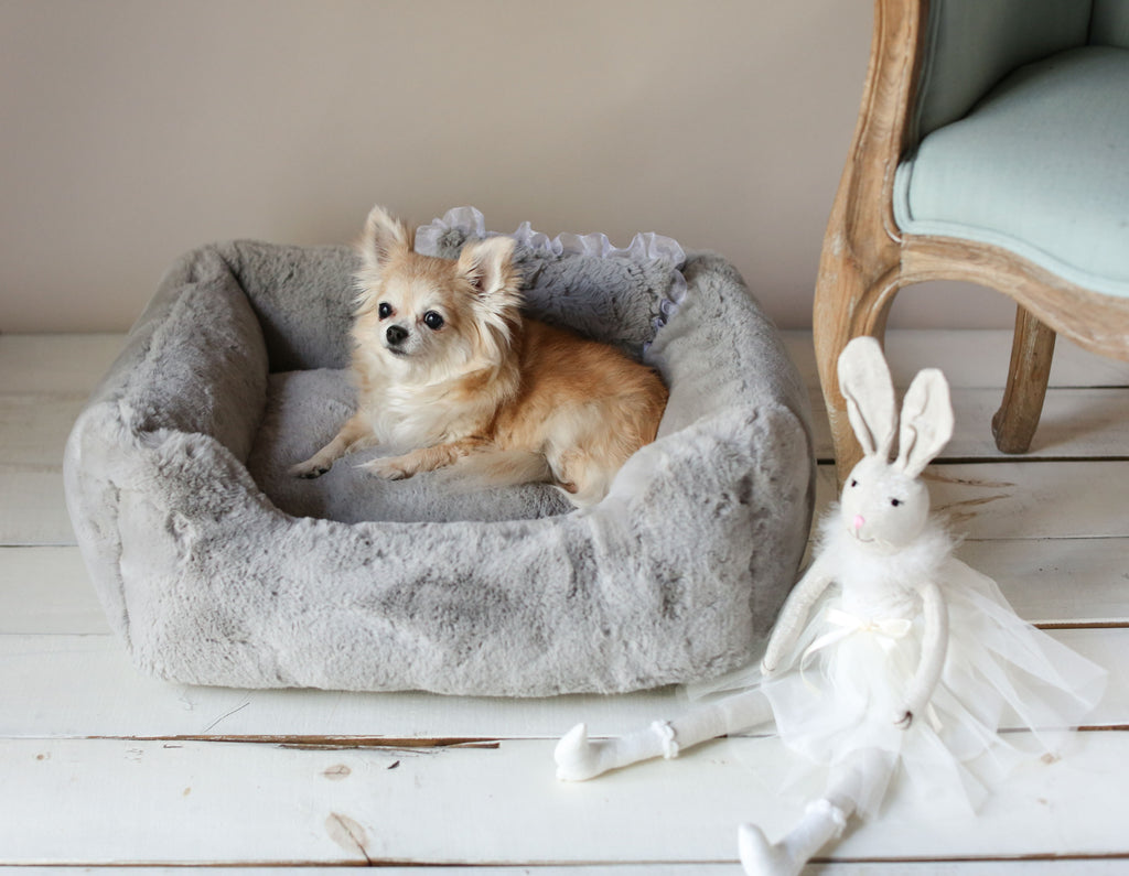 Small luxury designer dog bed