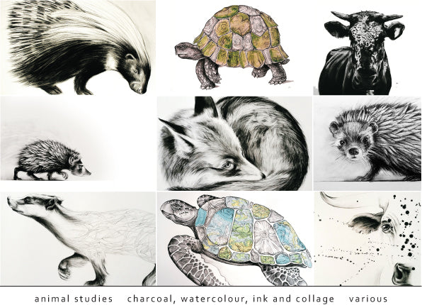 Tori Stowe Artist Animal Studies