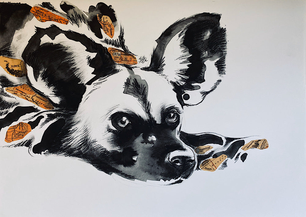Tori Stowe A3 Art Prints: WILD DOG
