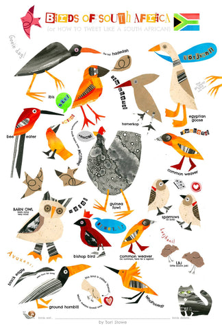 Common South African Birds by Tori Stowe