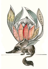 Tori Stowe A5 Art Prints: SMALL WORLD ELEPHANT SHREW