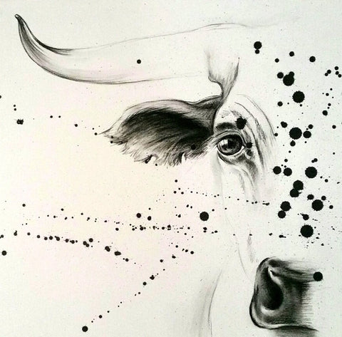 Tori Stowe Original Nguni Charcoal Drawing for Bonnie Evans