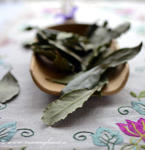 Dried Wild Bay Leaves theSpartantable
