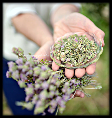 "A ""Bit of Sparta"", GET YOUR FIRST WILD THYME from mount Taygetus          *SPECIAL PROMO CELEBRATING 4 YEARS*"