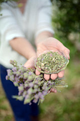 handpicked wild thyme from mountain Taygetus thespartantantable